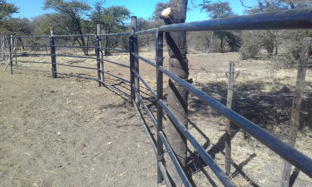 Cattle crush panels /kraal panels