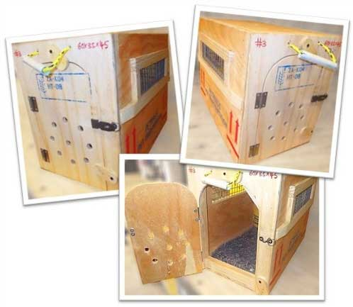 WOODEN TRAVEL BOX IATA APPROVED
