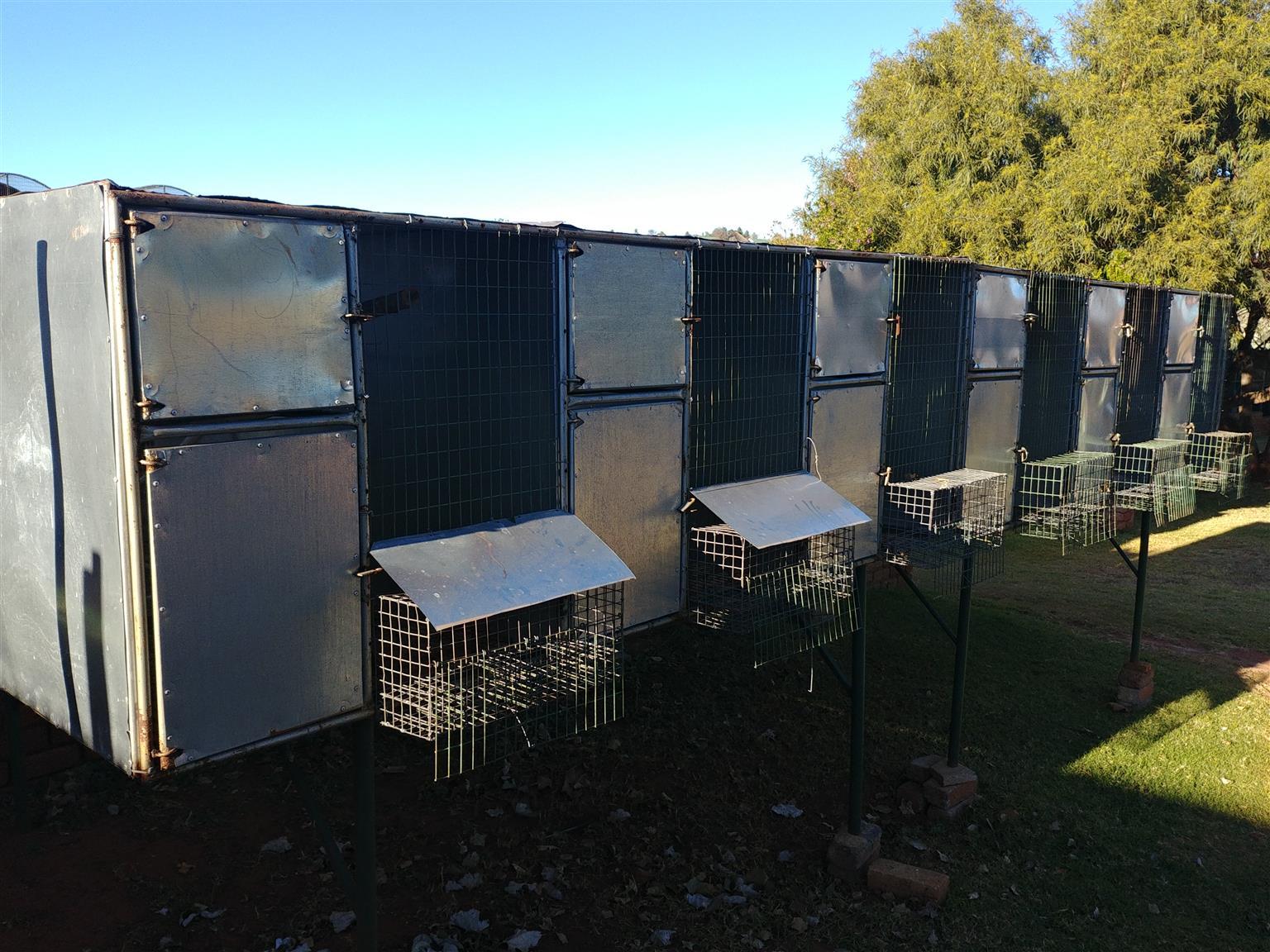 Free Standing Aviaries