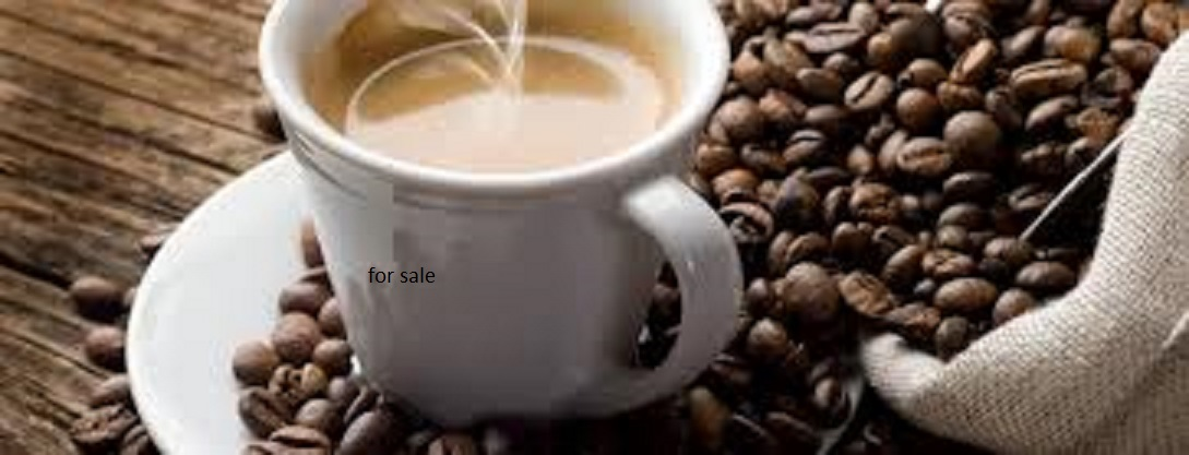 Coffeeshop&Bar and venue Moot area for sale