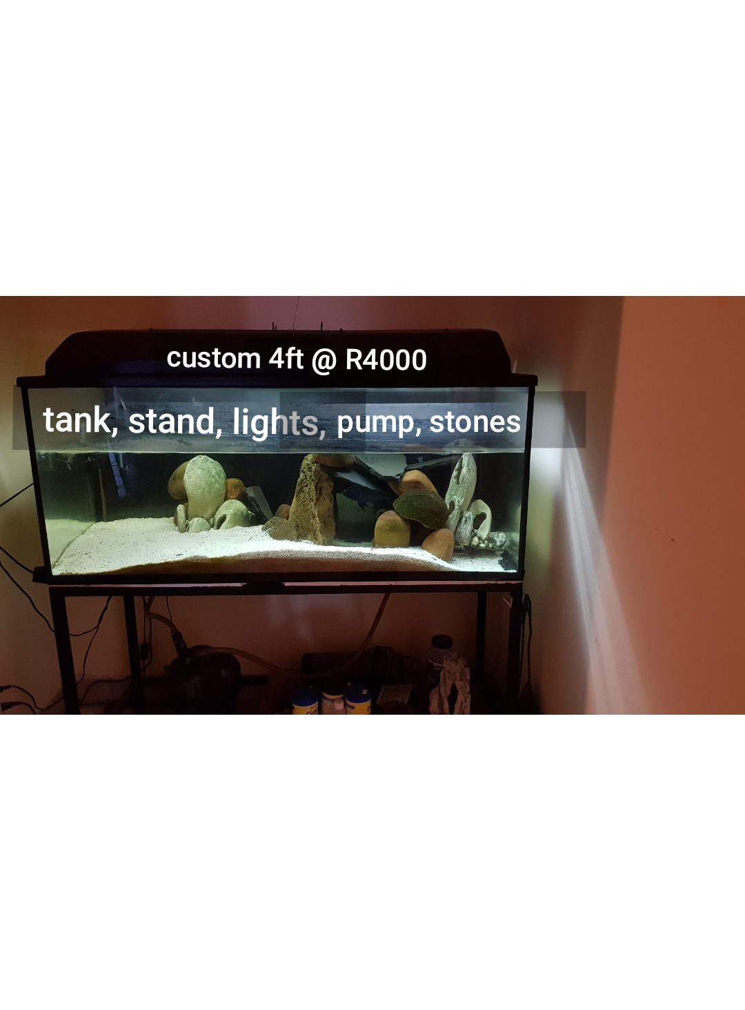 4ft tank