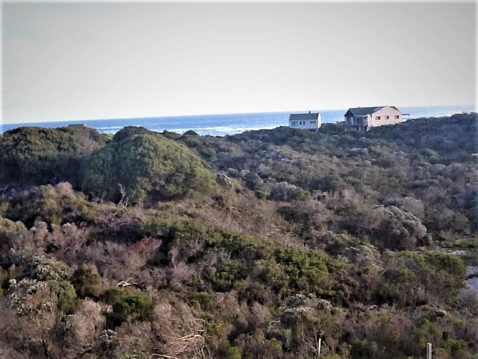 Plot in Agulhas National Park