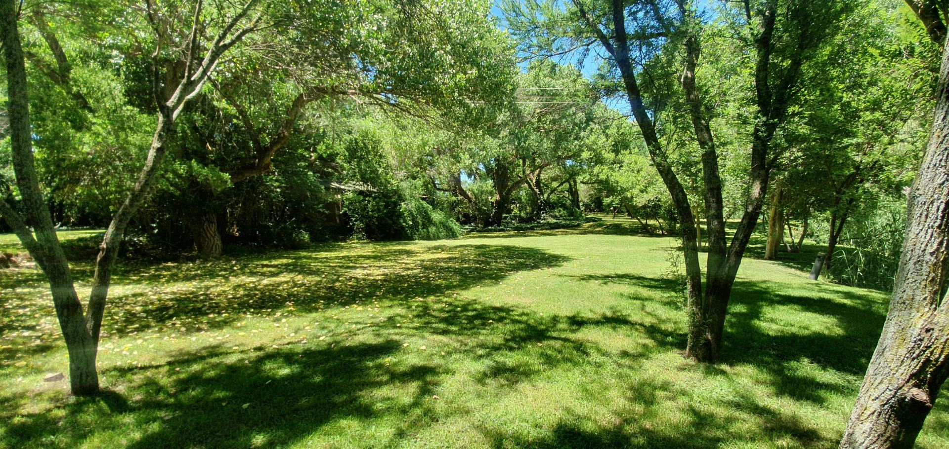 Small Holding For Sale in VALLOMBROSA