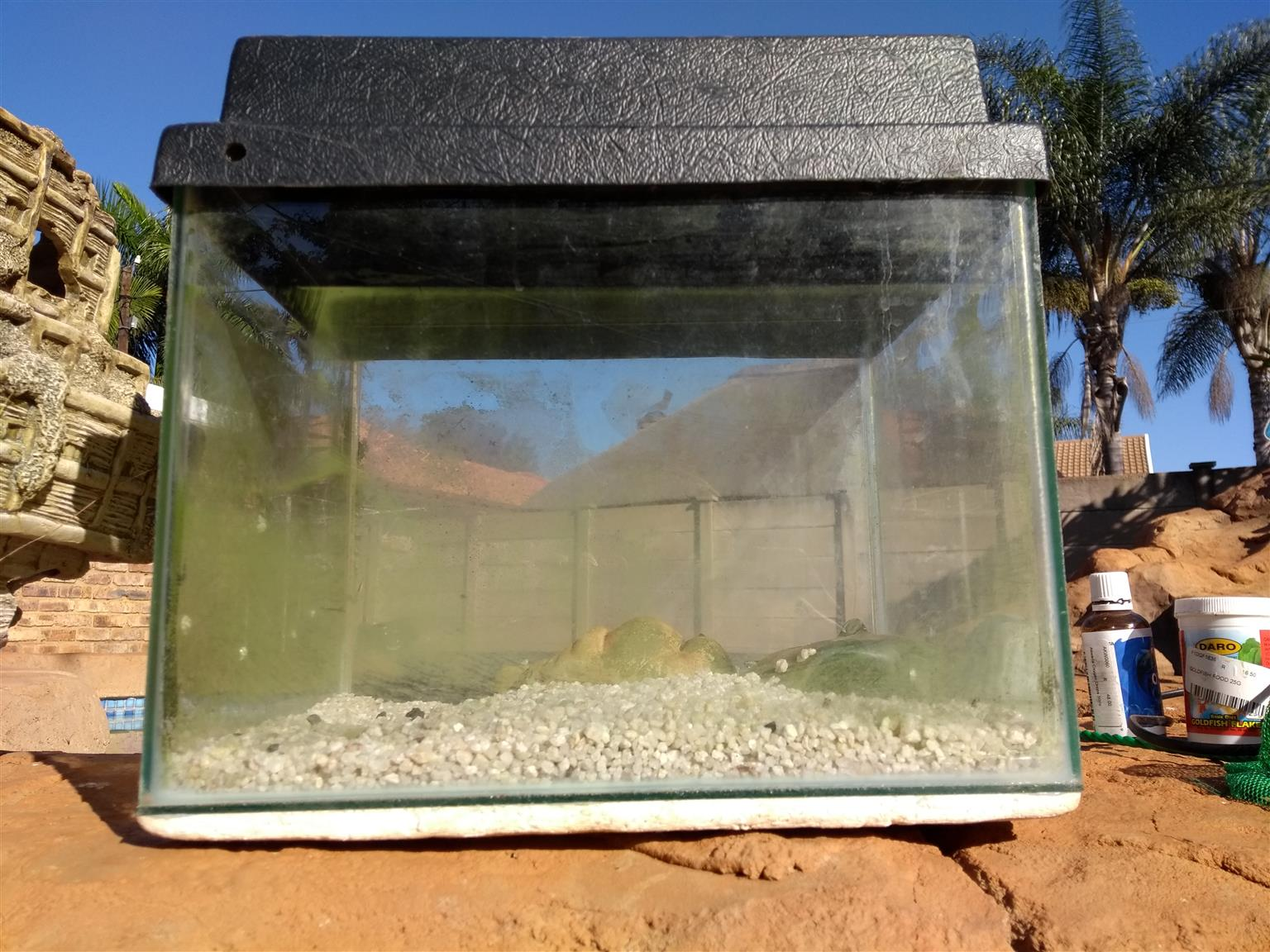 Fish tank with a pump an sand