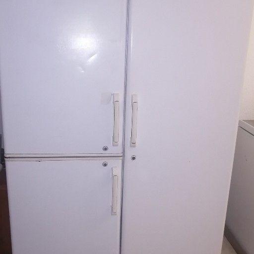 3 door fridge (fridge and freezer section)