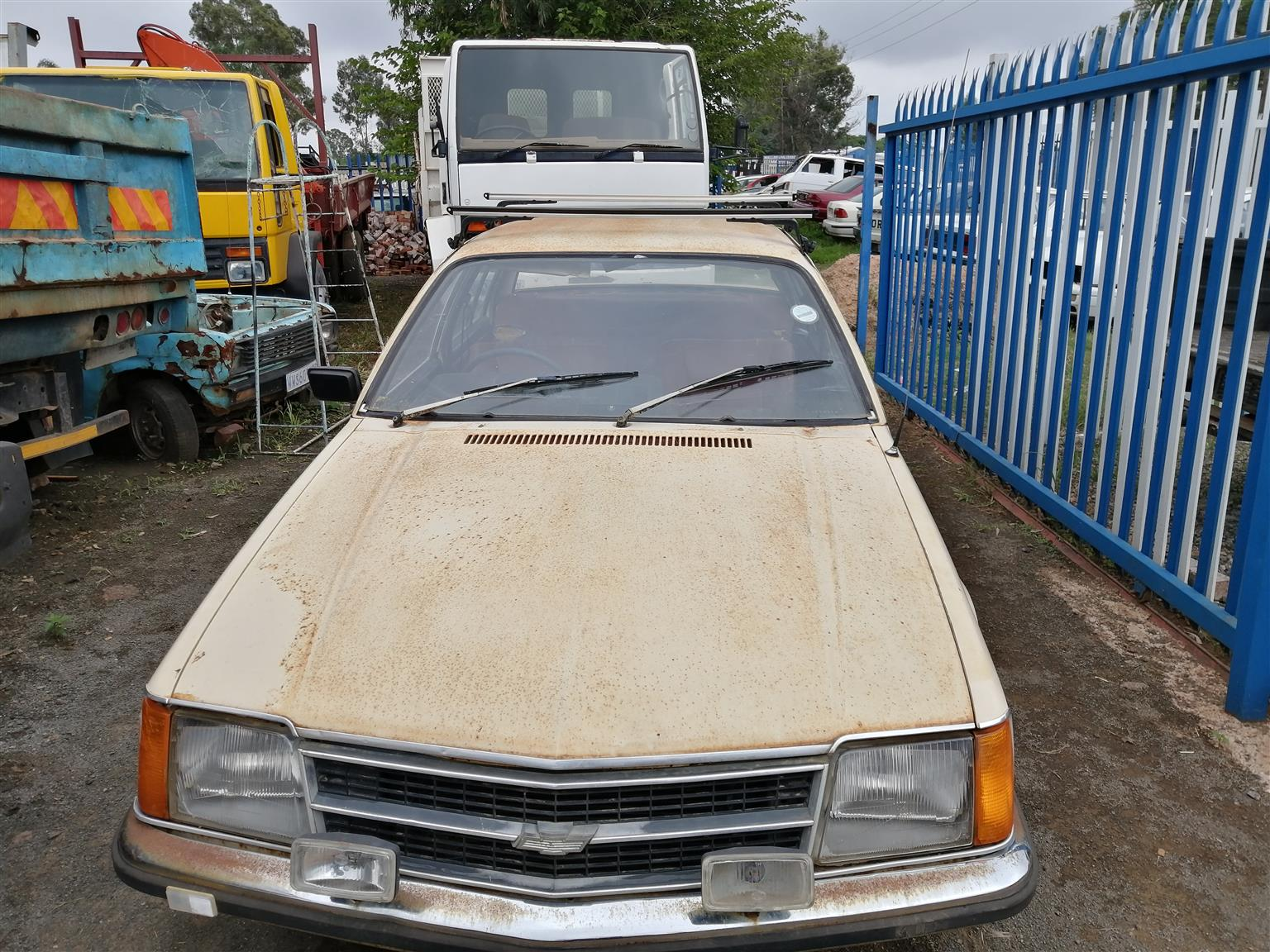 1982 Chevrolet Commodore for sale