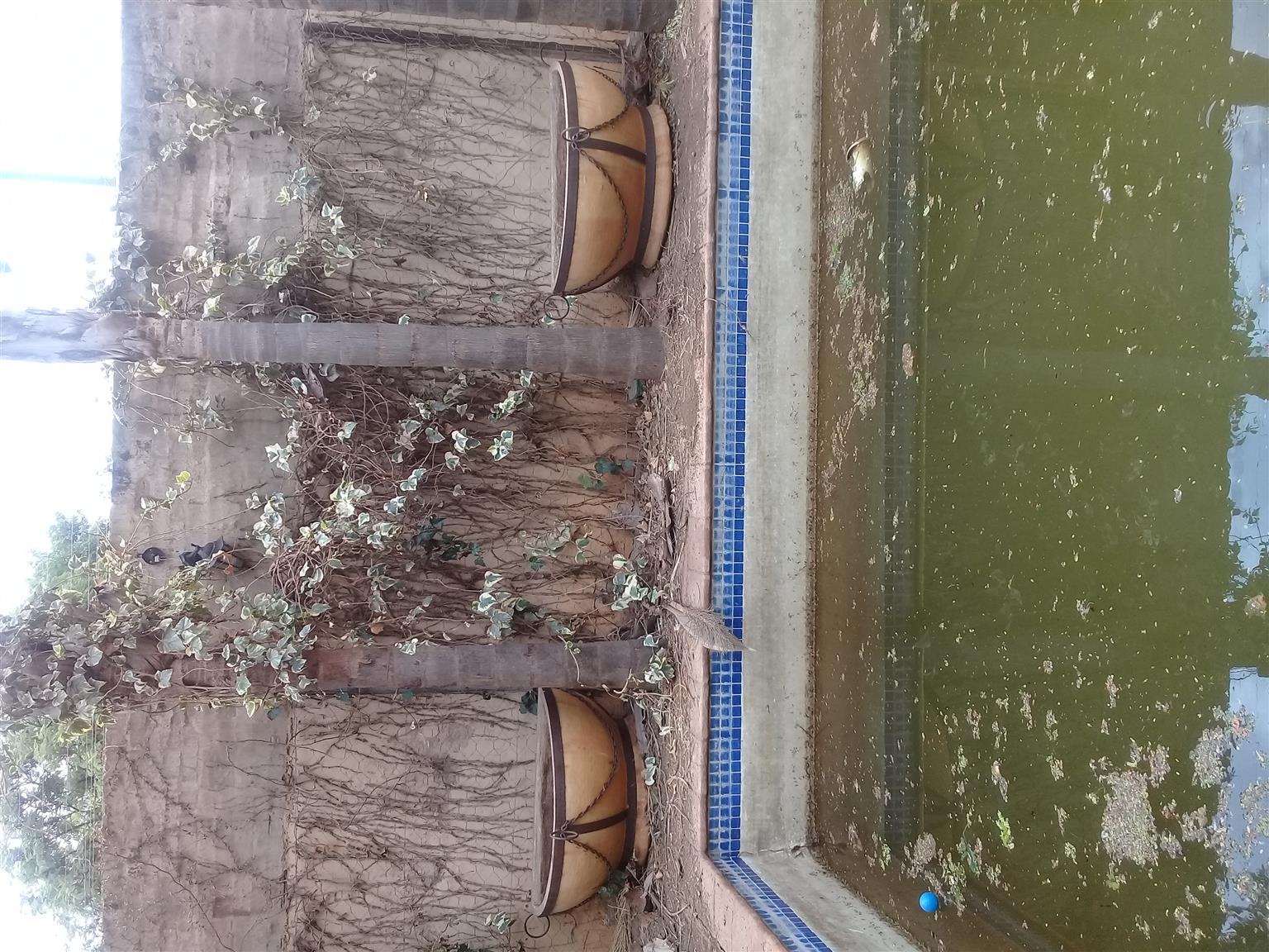 large flower pots& waterfall ls
