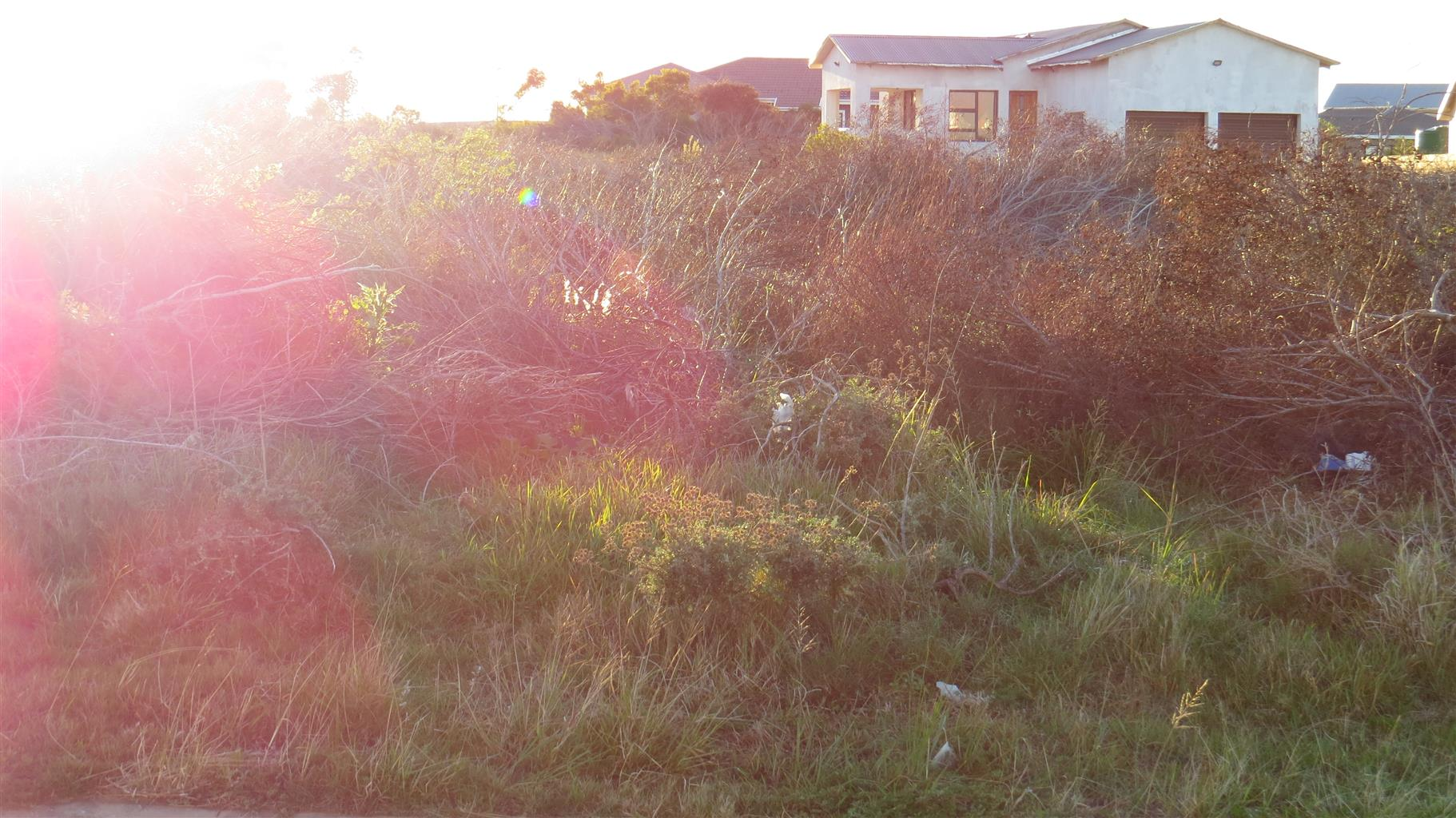 Vacant for Sale in Fountains Estate, Jeffreys Bay