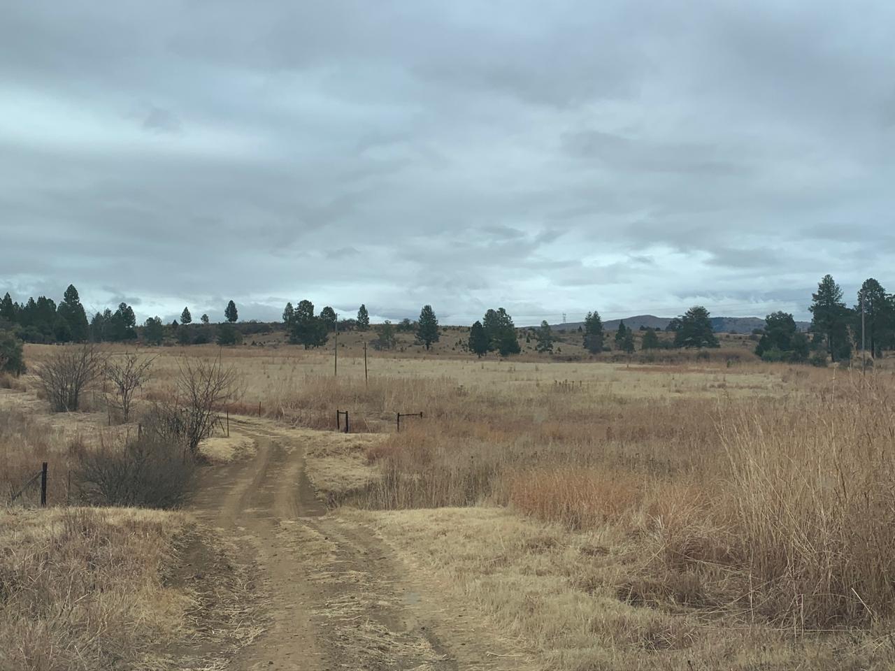 Farm For Sale in Lydenburg Rural