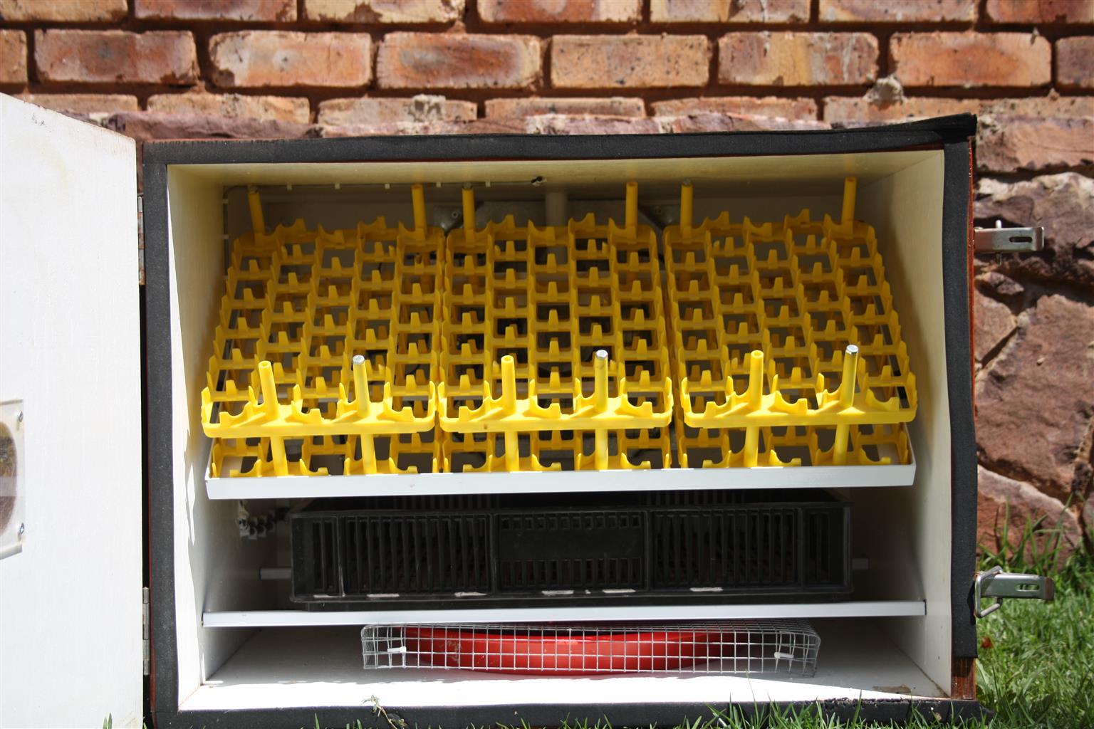 Shure hatch  Egg incubator taking 180 eggs