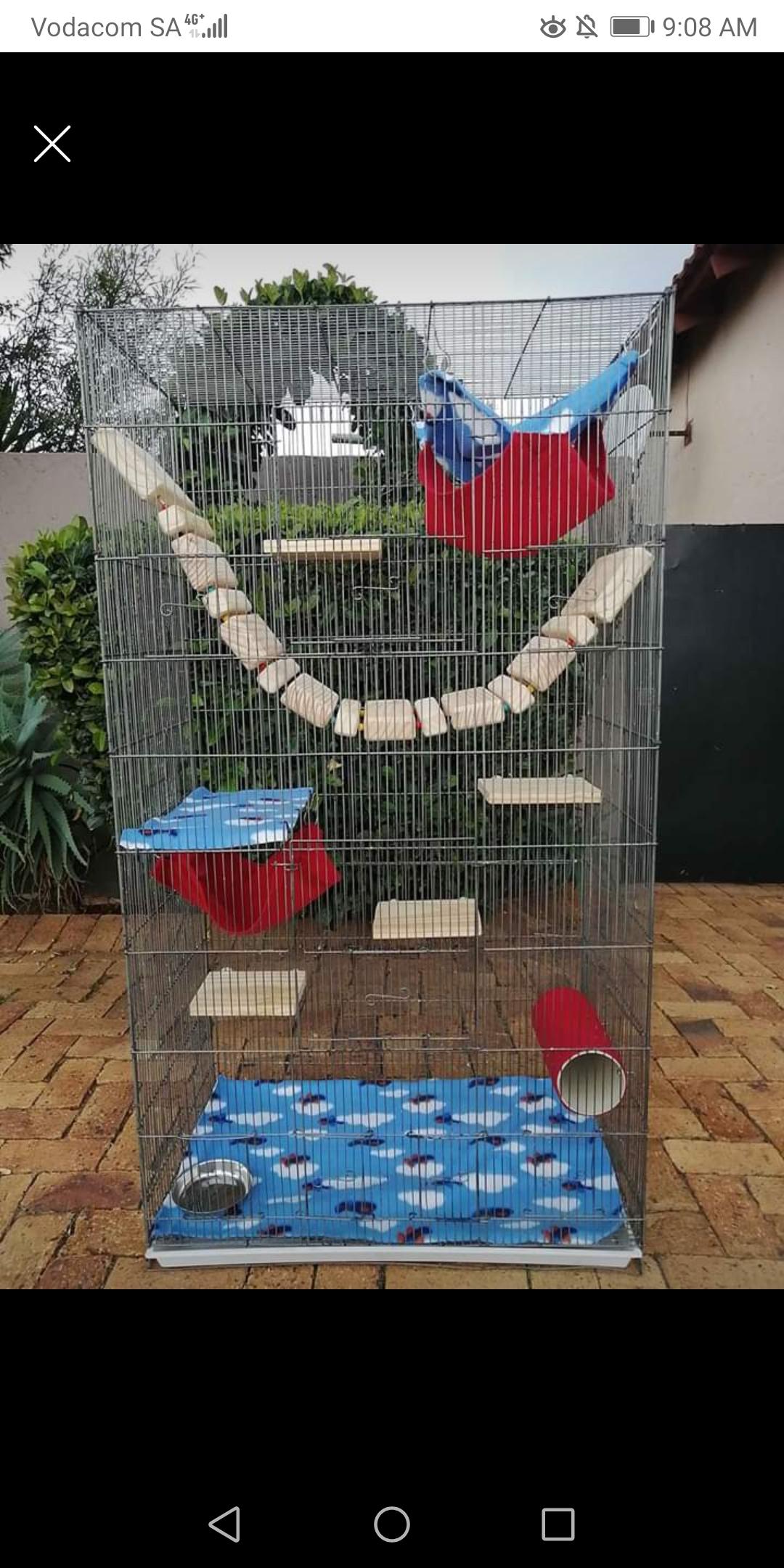 Chinchilla cages
