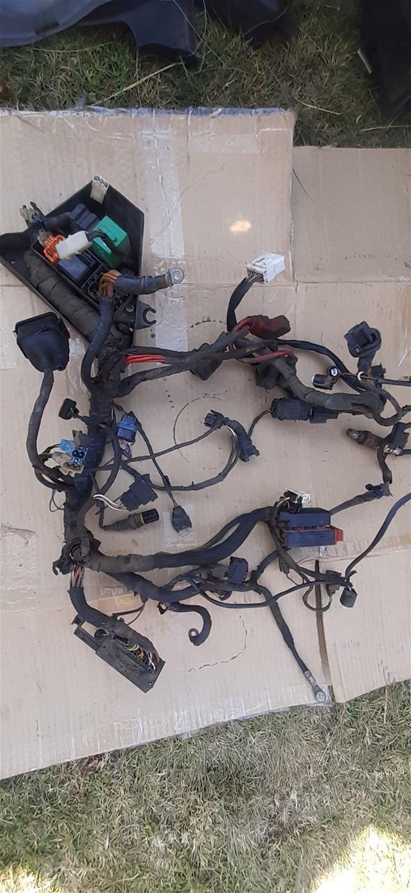AA105.14 BMW 650 F Harness - R 1000