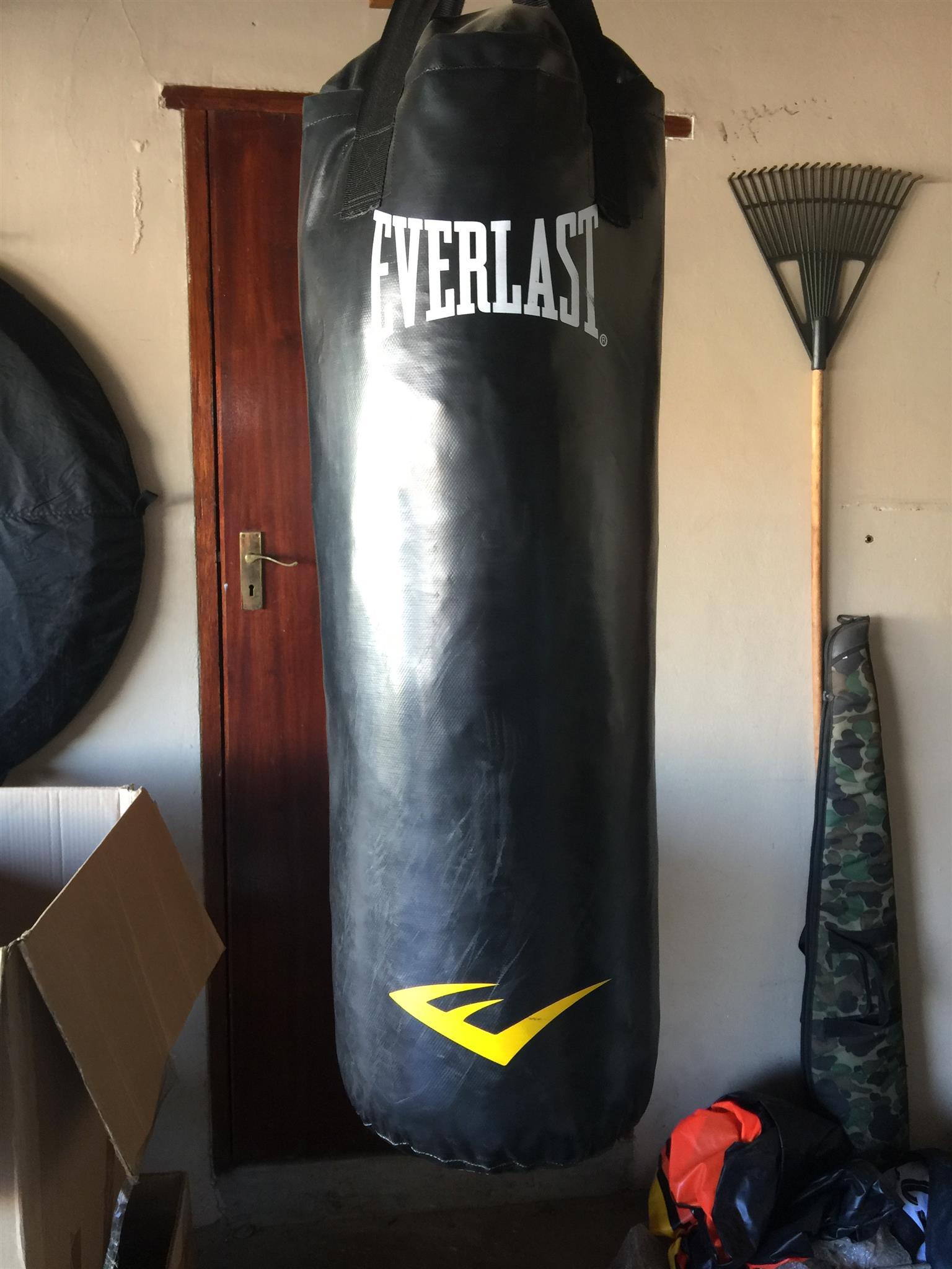 Everlast Punching bag.