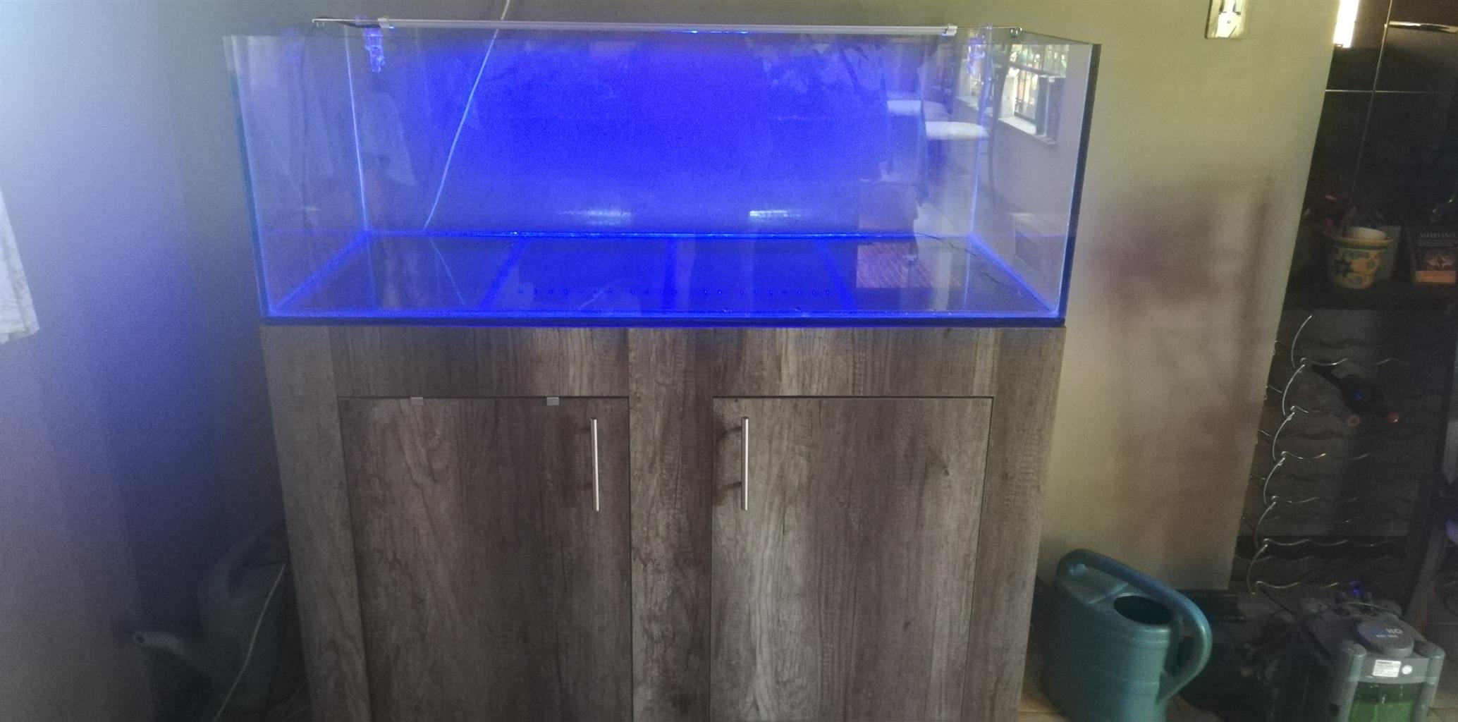 Complete Aquascape tank for sale