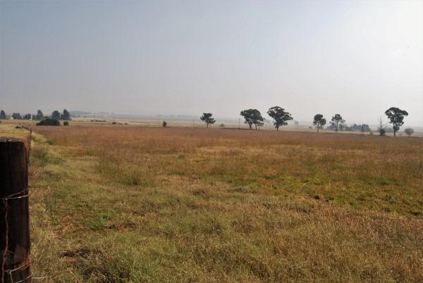 Farm For Sale in Grootvlei