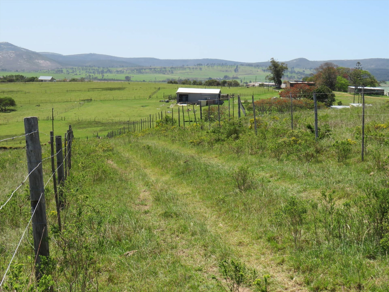 Farm For Sale in Thornhill