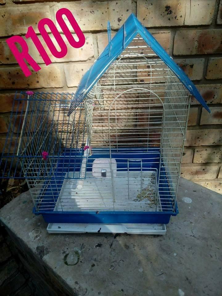 Blue hamster cage for sale