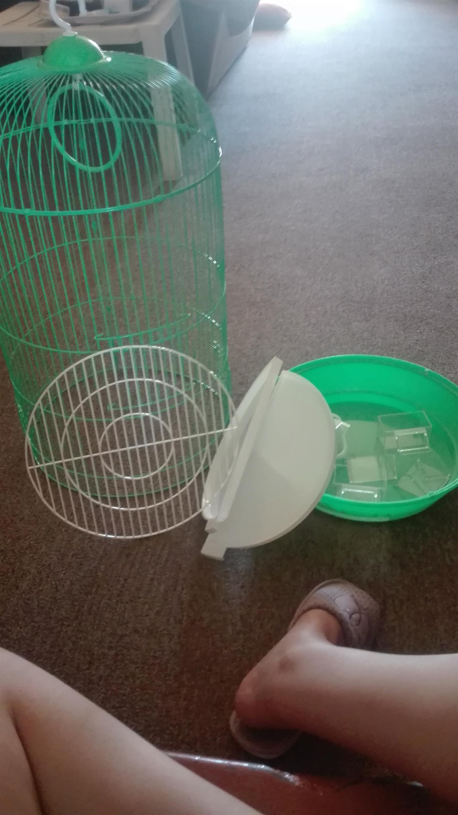 Voël hokkie / bird cage