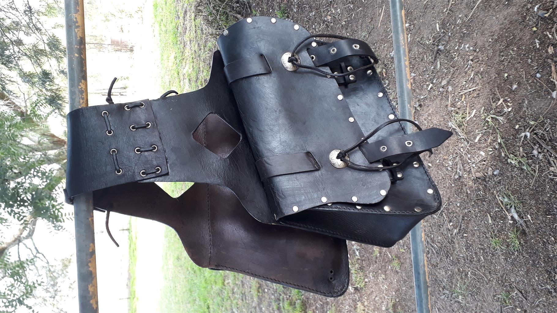 Dual Leather Saddlebags
