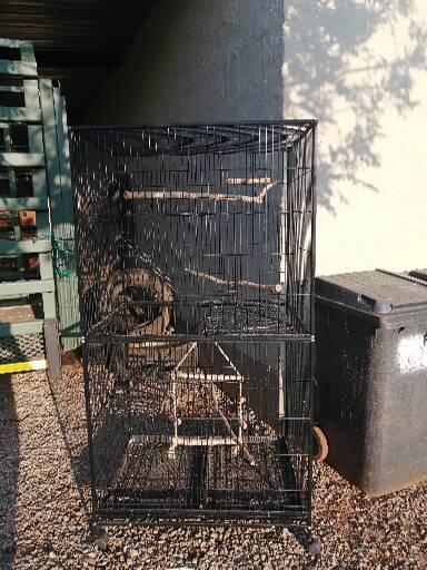 Birdcage like new