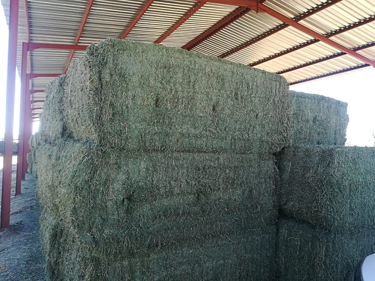 Lucerne bales and animal feeds