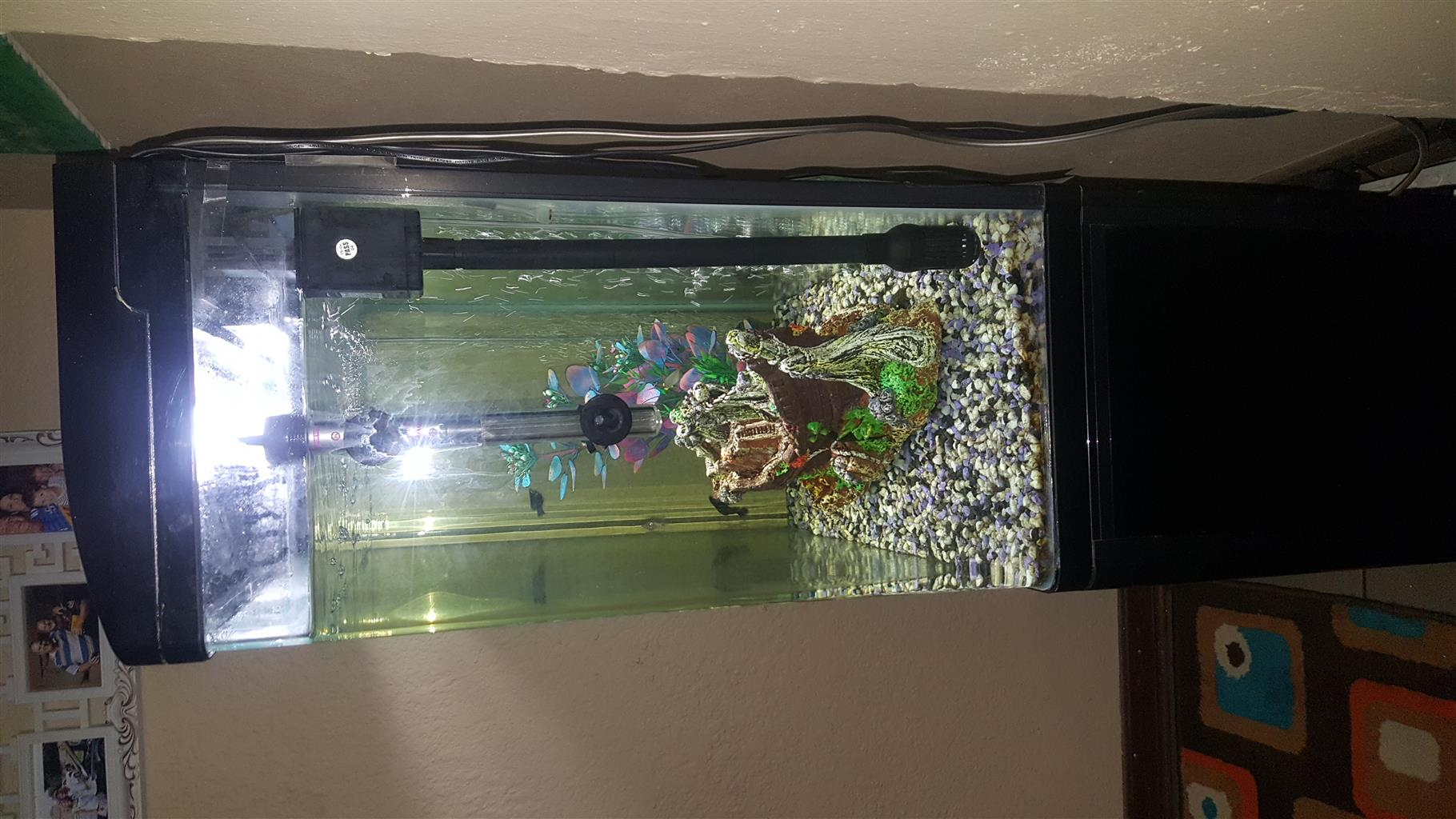 Acrylic Fish tank with cabinet.