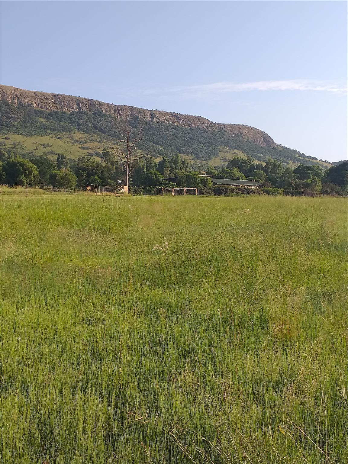 Independence- self sufficient - Kameeldrift west - 9.8hect plot