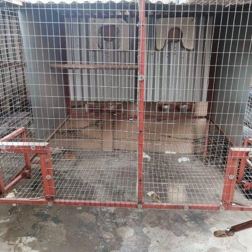 4 division bird cage