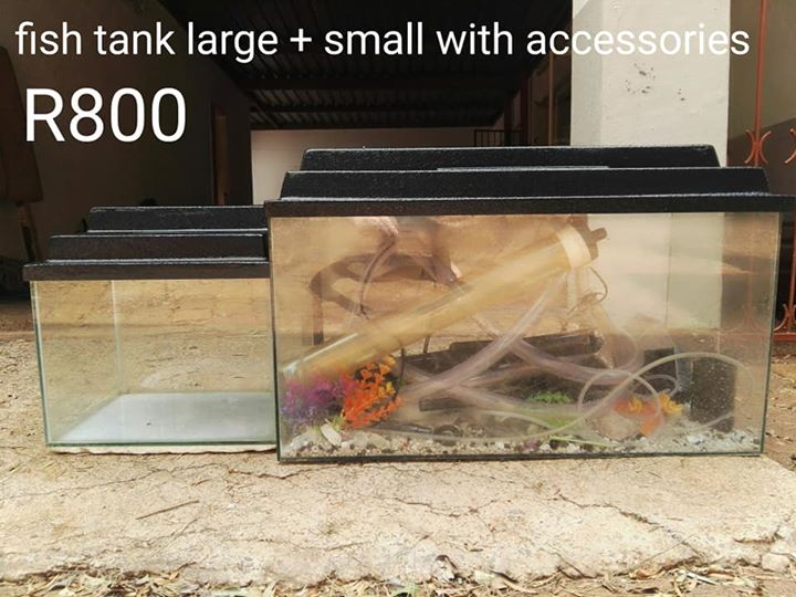 Large and small fish tank for sale