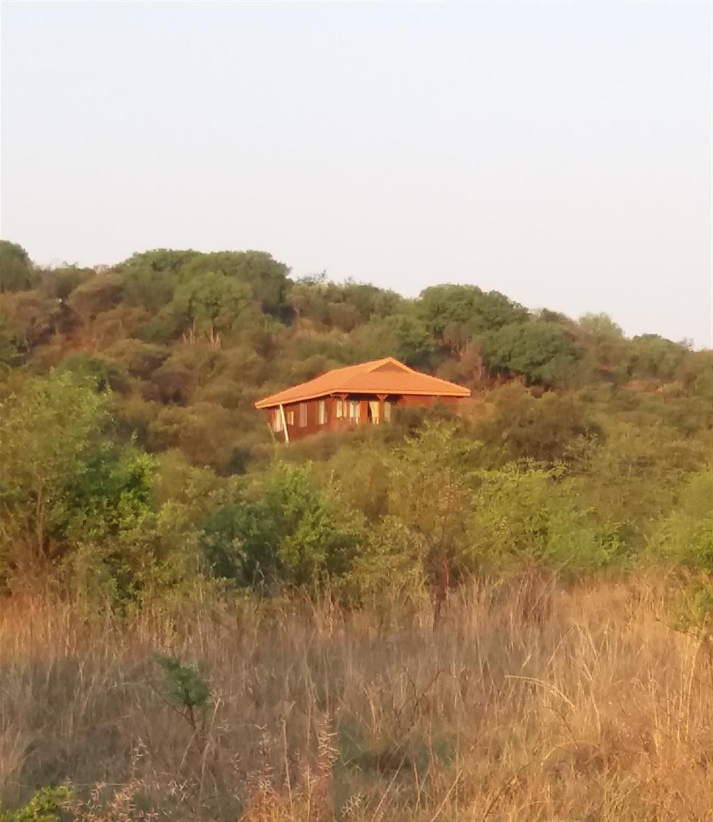 Plot 121, Buffelsdrift Game & Nature Reserve