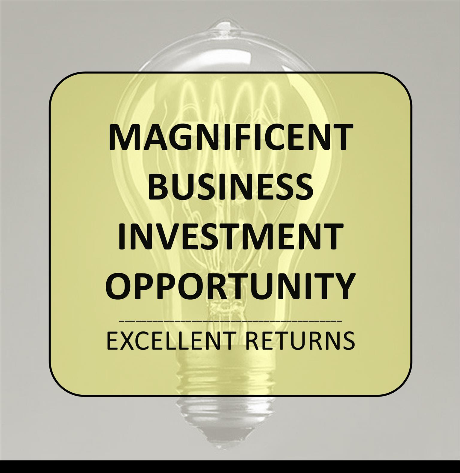 MAGNIFICENT INVESTMENT OPPORTUNITY IN NATIONAL BUSINESS EXPANSION PROGRAM