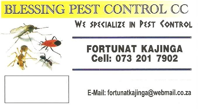Blessing Pest Control, We provide pest control service ,for more info please contact 0732017902, watt apps 0614130492