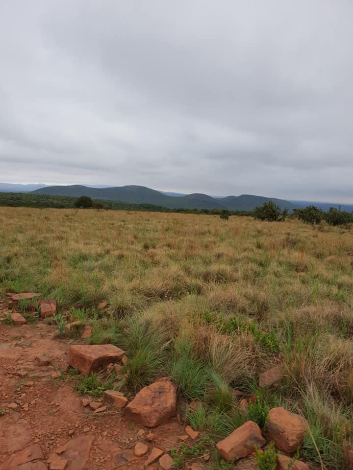263 hectare game farm near Groot Marico