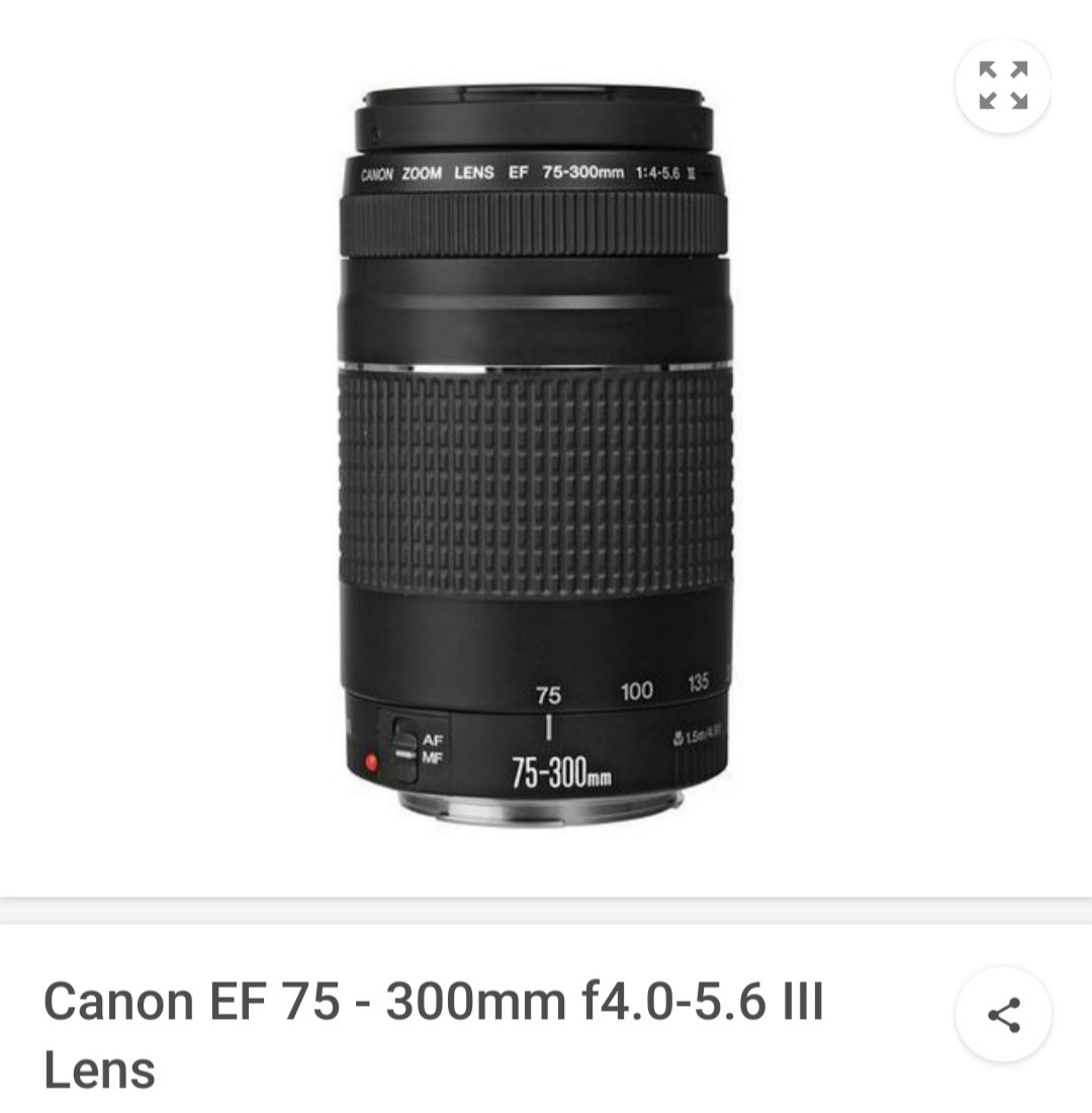Canon 75 - 300mm 4-5.6 III lens
