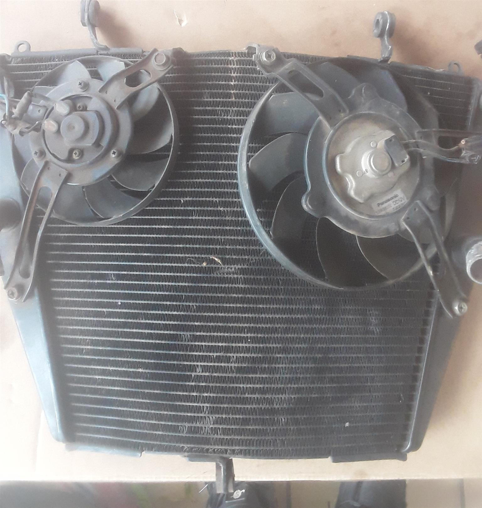2010 Cooling Systems Radiators