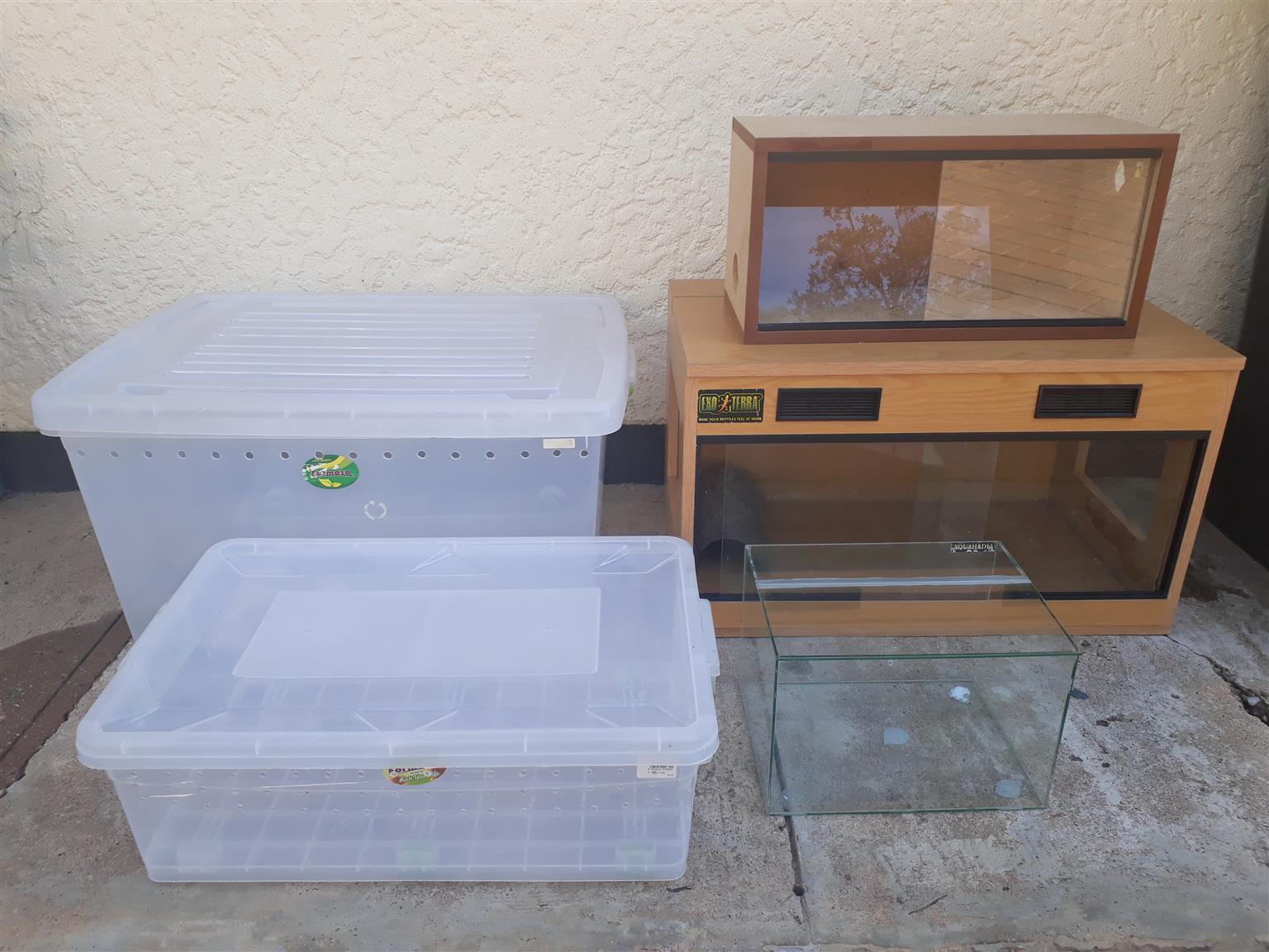 Terrariums for sale