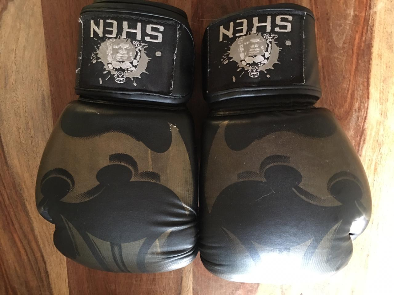 45kg large Title boxing bag with Schen boxing gloves
