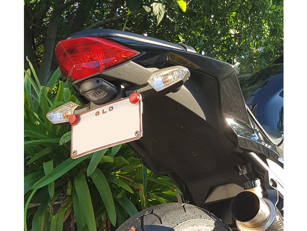 Kawasaki Ninja 300 Fender Eliminator