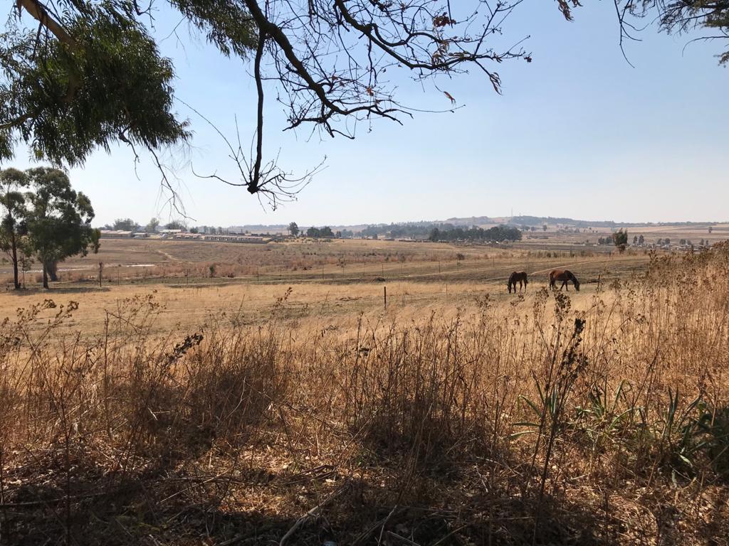 13ha small farm next to Ermelo