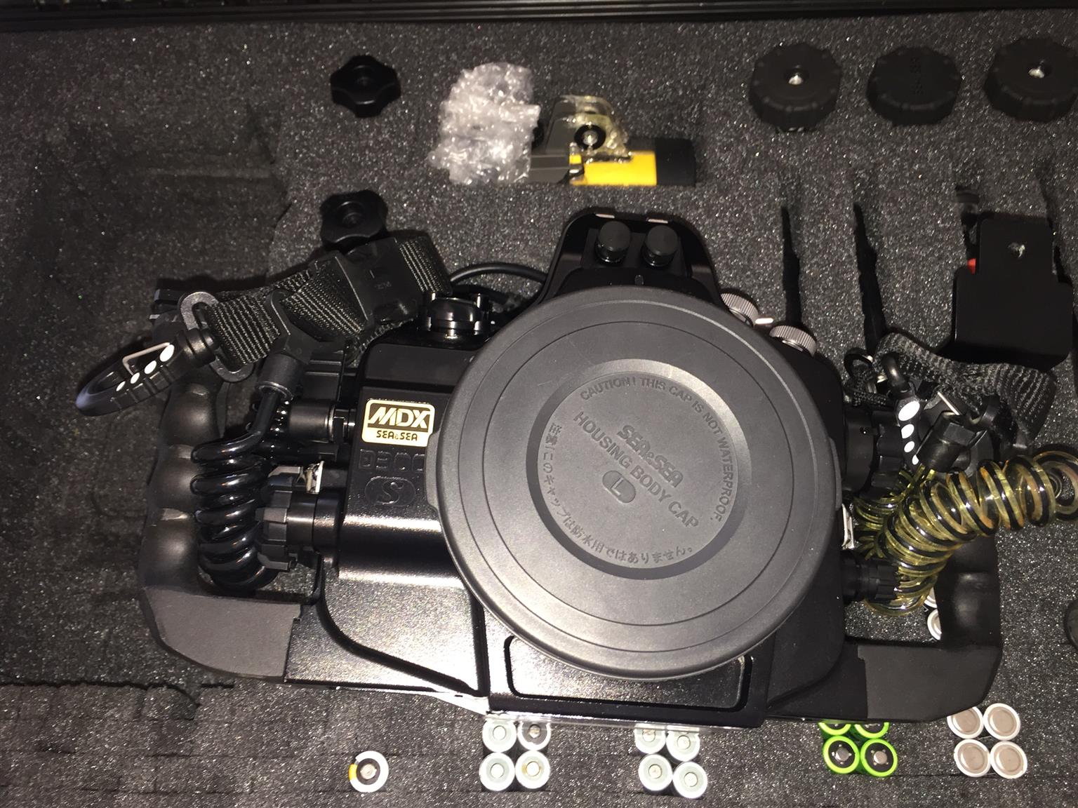 Nikon D300s dive camera with Sea & Sea housing