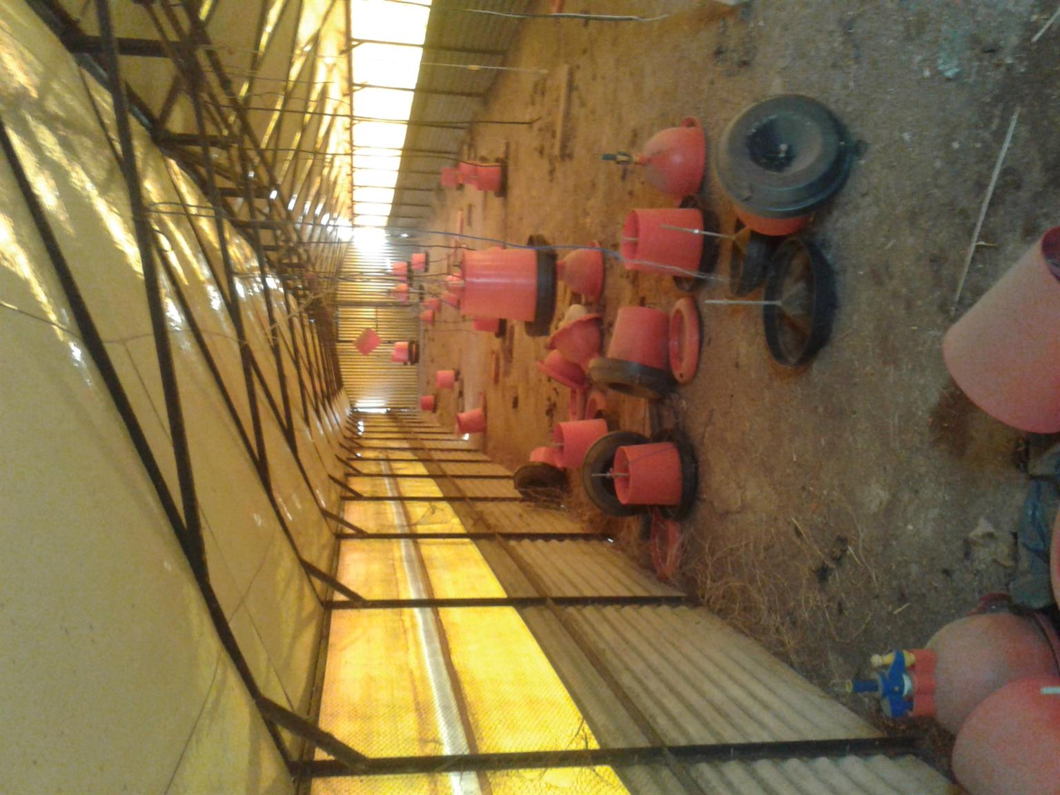 Chicken houses with feeders for sale