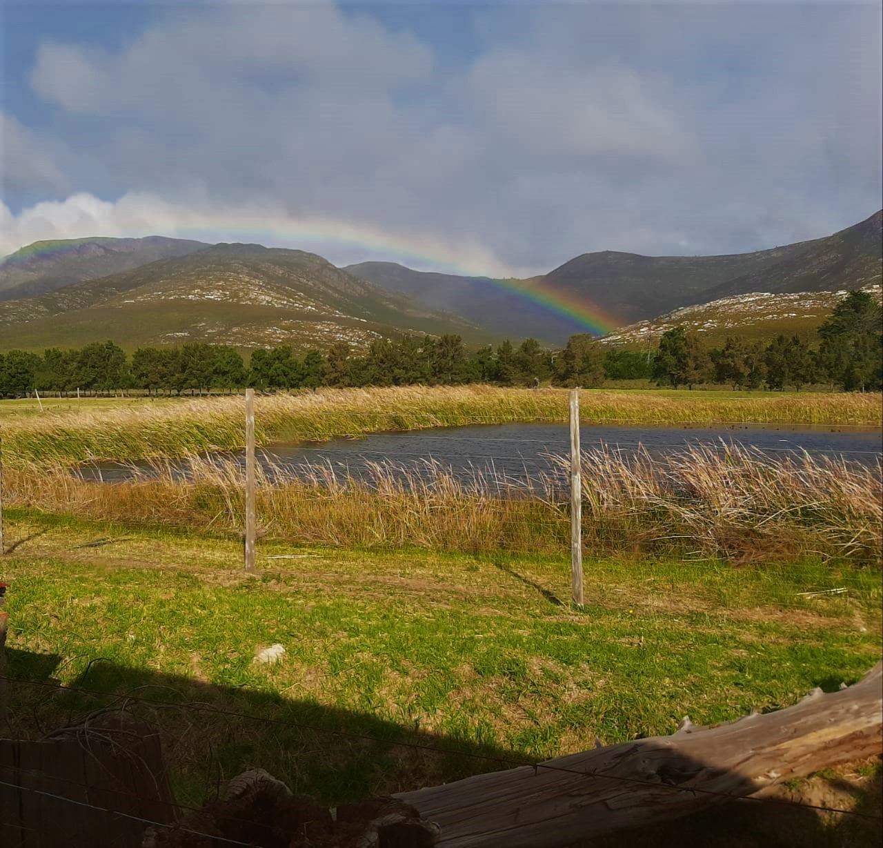 Farm For Sale in Joubertina