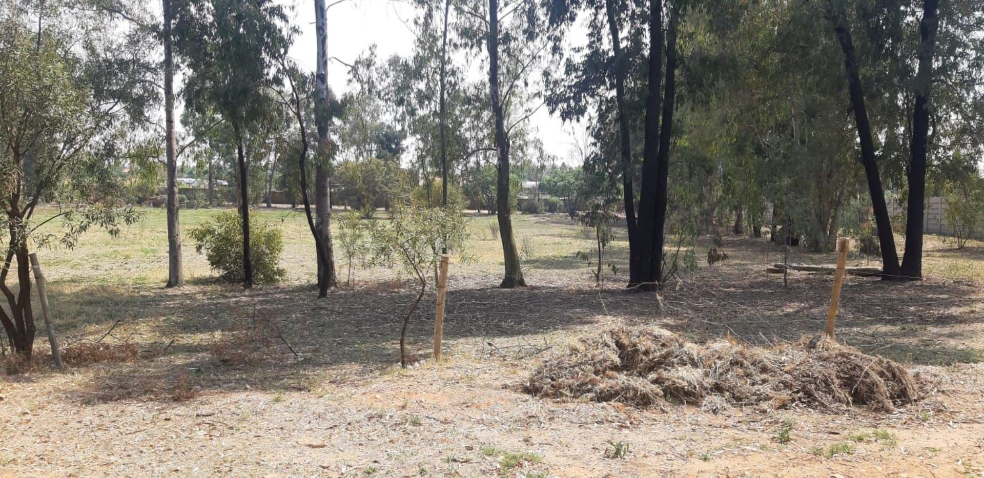 Small Holding For Sale in MNANDI A H