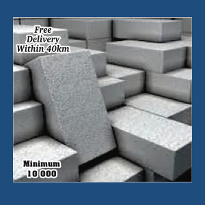 BRICKS : Cement Stock Bricks