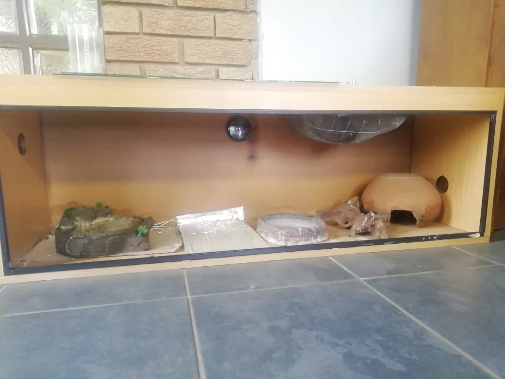 1 x Reptile Cages for sale
