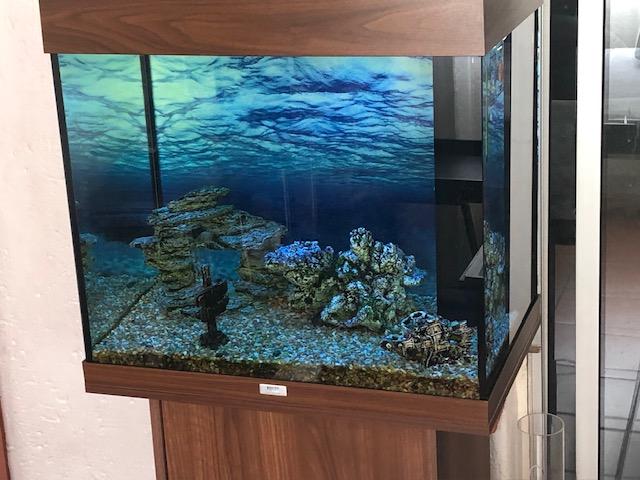 Jewel 150 lt Fish tank with cabinet | Junk Mail