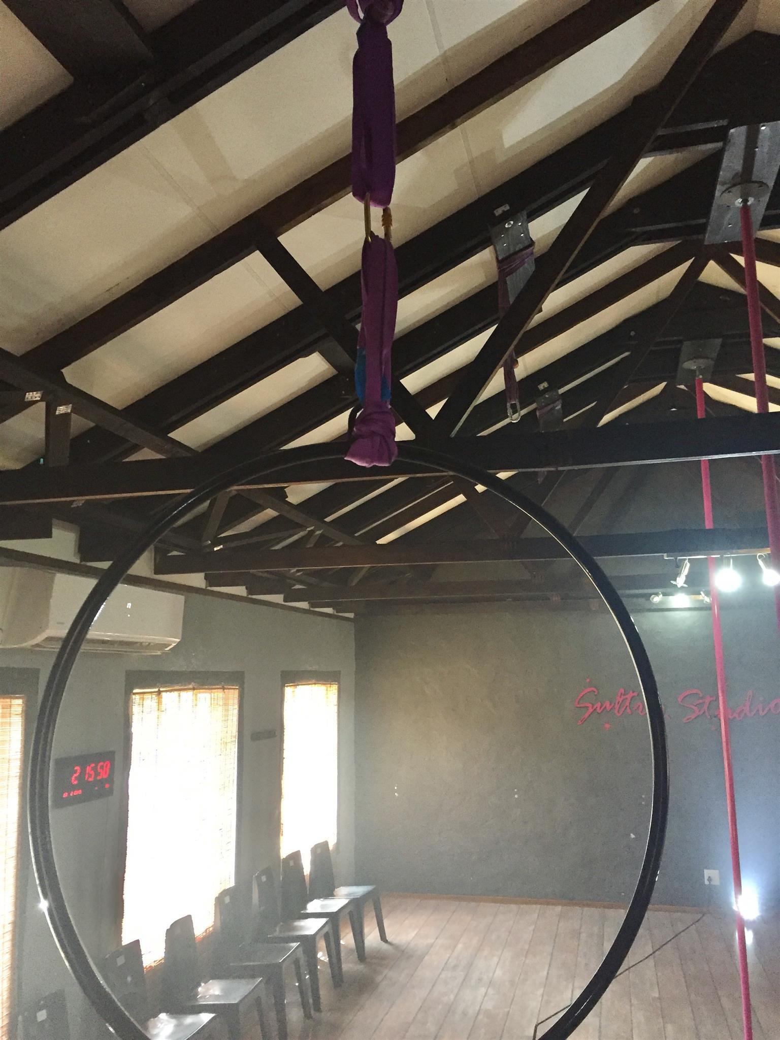Professional Aerial Hoops (Lyra)