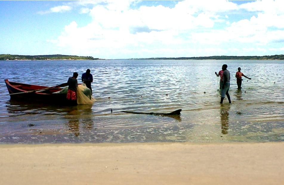 Waterfront Lodge Mozambique (Tourism)