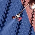 Roof painting,Roof repairs, roof insulation and roof renovations