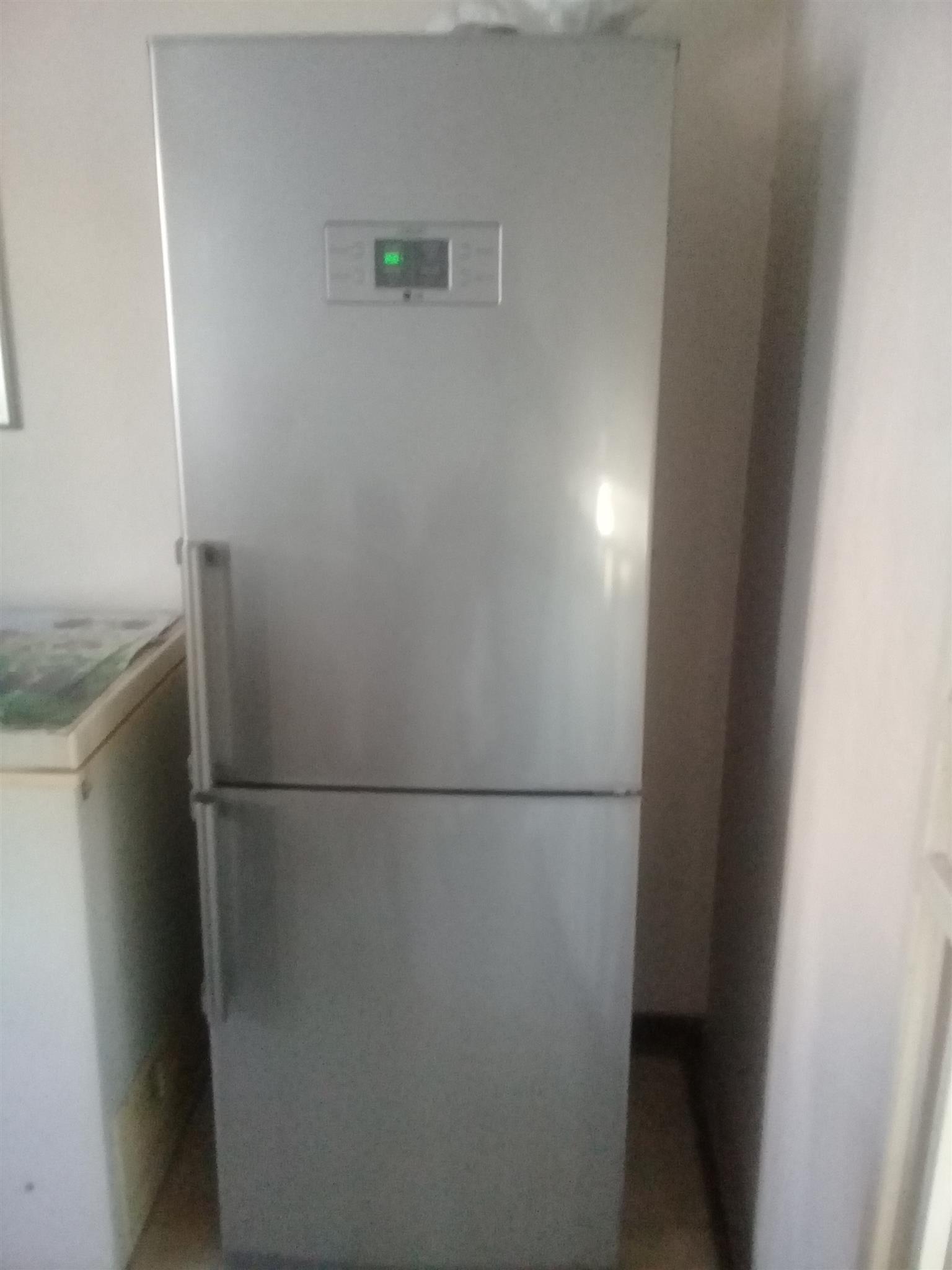 Silver LG Fridge/Freezer Bloubosrand